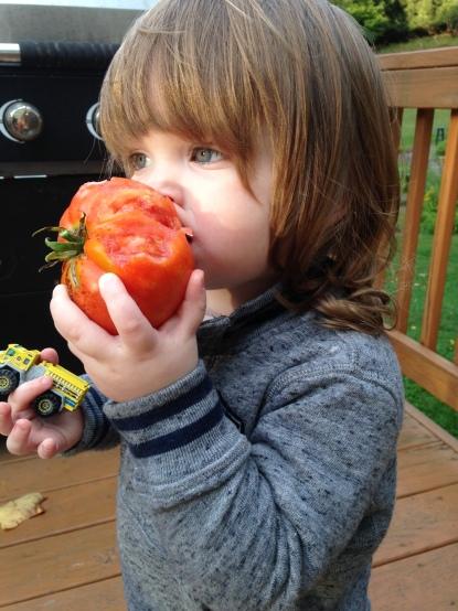 Ian and Tomato (3)